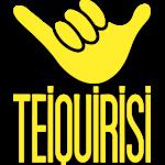 diseño web wordpress teiquirisi